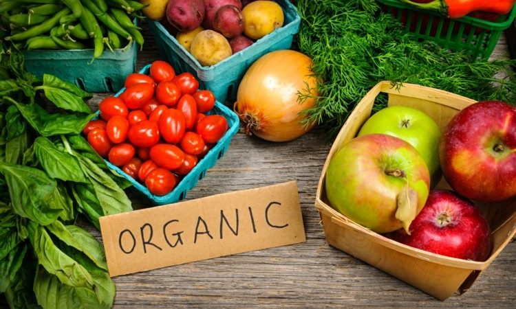 Why should you invest in Consuming Organic Fresh Food?