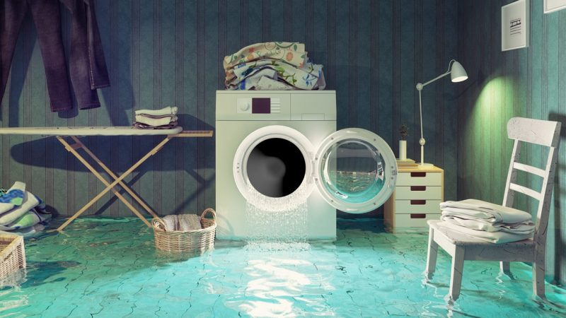 How Fast Does Water Damage a Home?